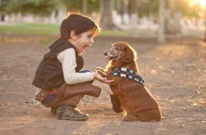 Young Hand Chewie