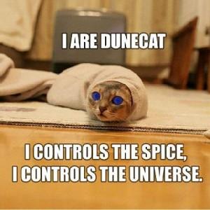 dune-catd